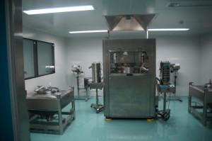 DSC03635 (2)