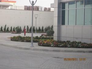 Pionee  September-2011 002