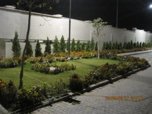 Pionee  September-2011 089